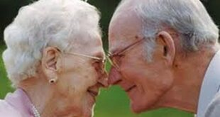 50 лет вежливости