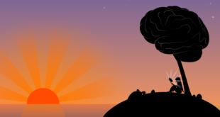 10 секретов психики человека, о которых мало кто знает