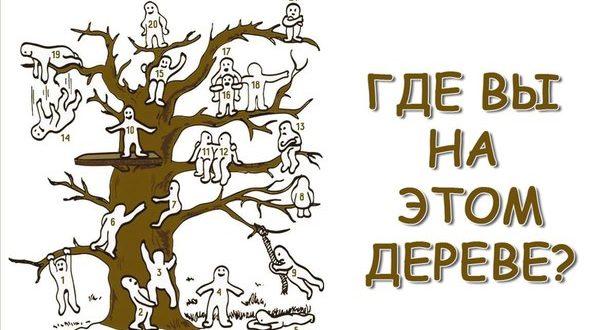 Тест: Найдите себя наэтом дереве иузнайте свое положение вобществе