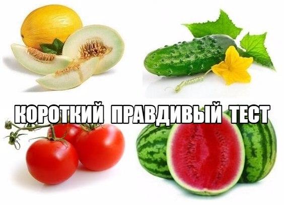 Самый короткий, но необычайно правдивый тест - дыня-арбуз, помидор-огурец