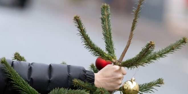 Сколько времени можно держать в квартире новогоднюю ёлку
